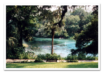 Rainbow Springs Real Estate, Rainbow Springs Waterfront Real Estate, Rainbow Springs Real Estate for sale, Rainbow River Real Estate, Dunnellon Waterfront Real Estate, Dunnellon waterfront property, rentals, lots, acreage